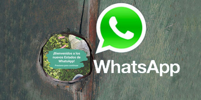 Whatsapp Wer Kann Meinen Status Sehen