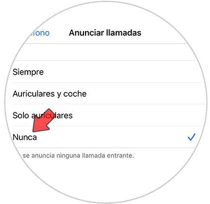 Entfernen Sie die Stimme von Siri bei Anrufen. iPhone-iOS-13-3.png