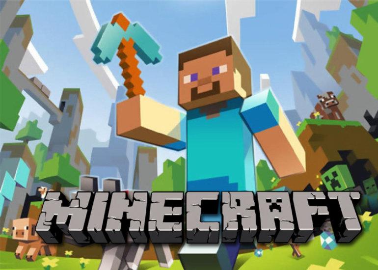 Minecraft-Abdeckung