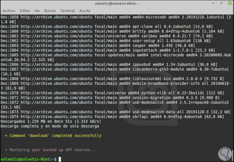 26 - run - download-Linux-packages-Mint-20.png