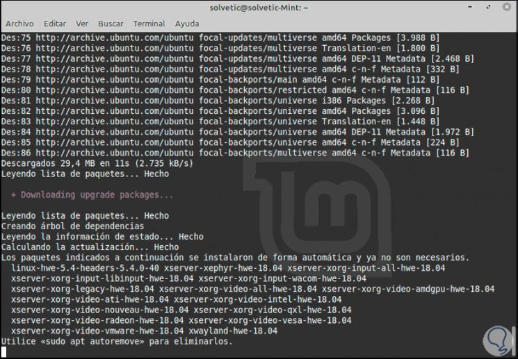29-Update-Linux-Mint-19.3-auf-Linux-Mint-20.png